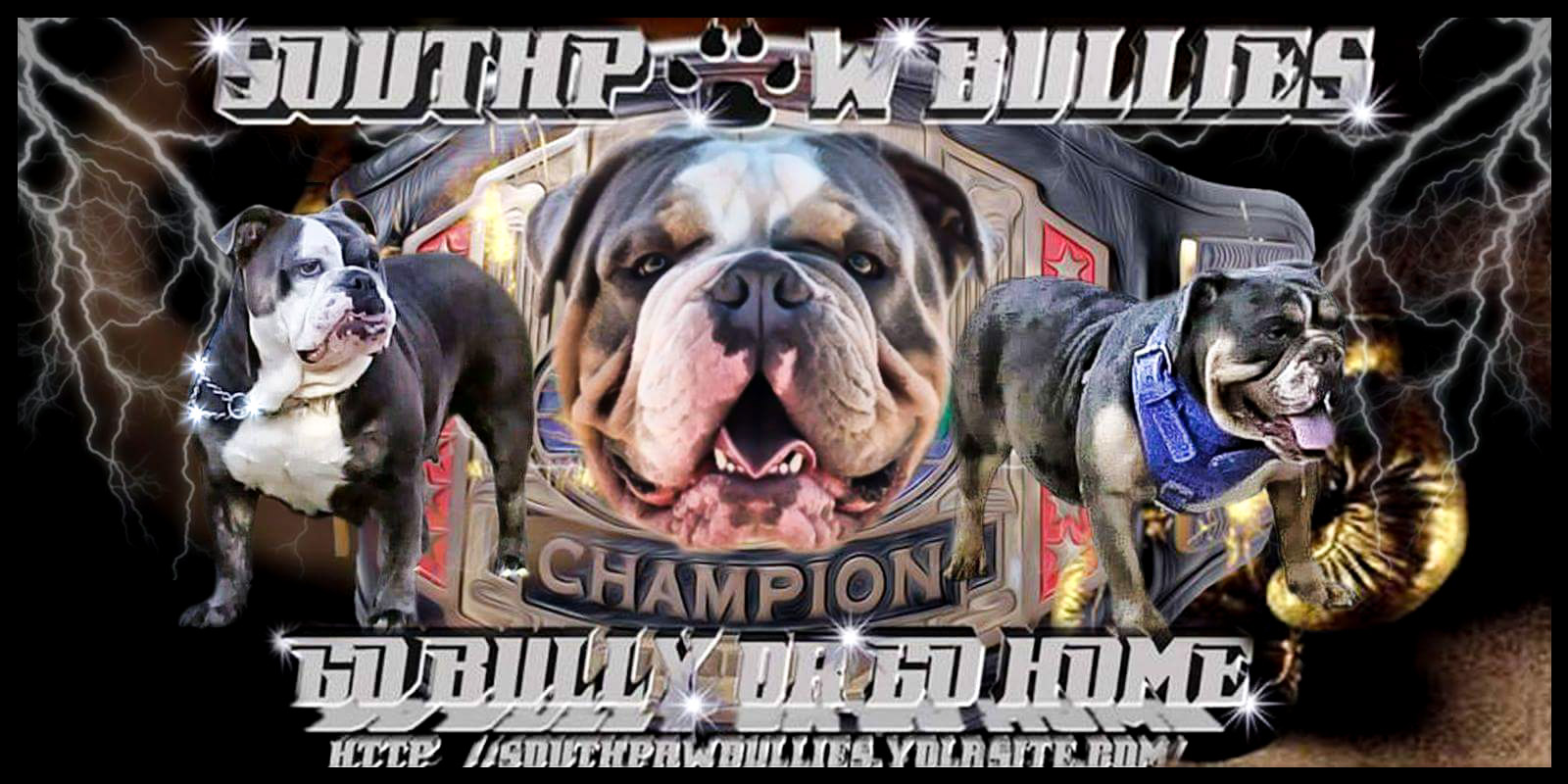 SouthPaw Bullies; Home of the Italian & Olde English Bulldogge
